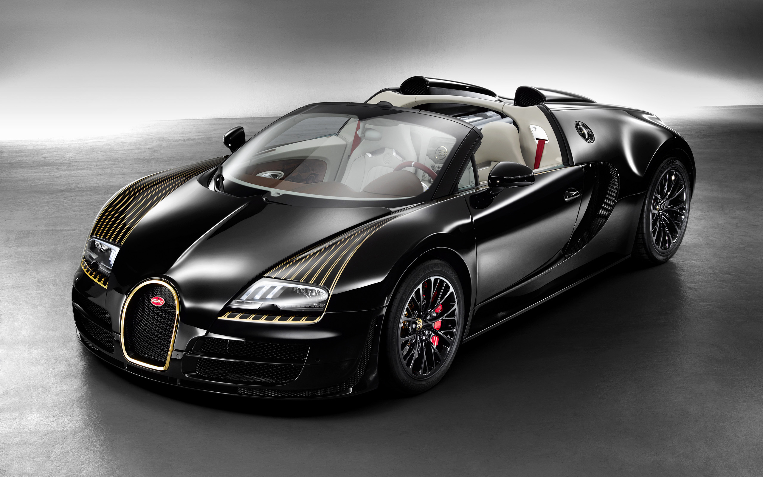 Bugatti Veyron Black Bess photo #1