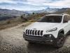 2014 Jeep Cherokee Sageland Concept thumbnail photo 58536