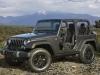 2014 Jeep Wrangler Willys Wheeler Edition thumbnail photo 31357
