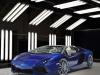 2014 Lamborghini Aventador Roadster Ad Personam