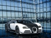 2014 Mansory Bugatti Veyron Vivere thumbnail photo 49031