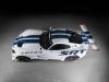2014 Riley Technologies Dodge Viper GT3-R thumbnail photo 17889