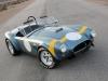 Shelby Cobra 289 FIA 50th Anniversary 2014
