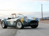 Shelby Cobra 289 FIA 50th Anniversary 2014