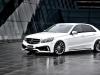 2014 Wald Mercedes-Benz E-Class Black Bison Edition thumbnail photo 42560