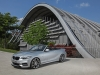 2015 DAHLER BMW M235i Cabriolet thumbnail photo 94870