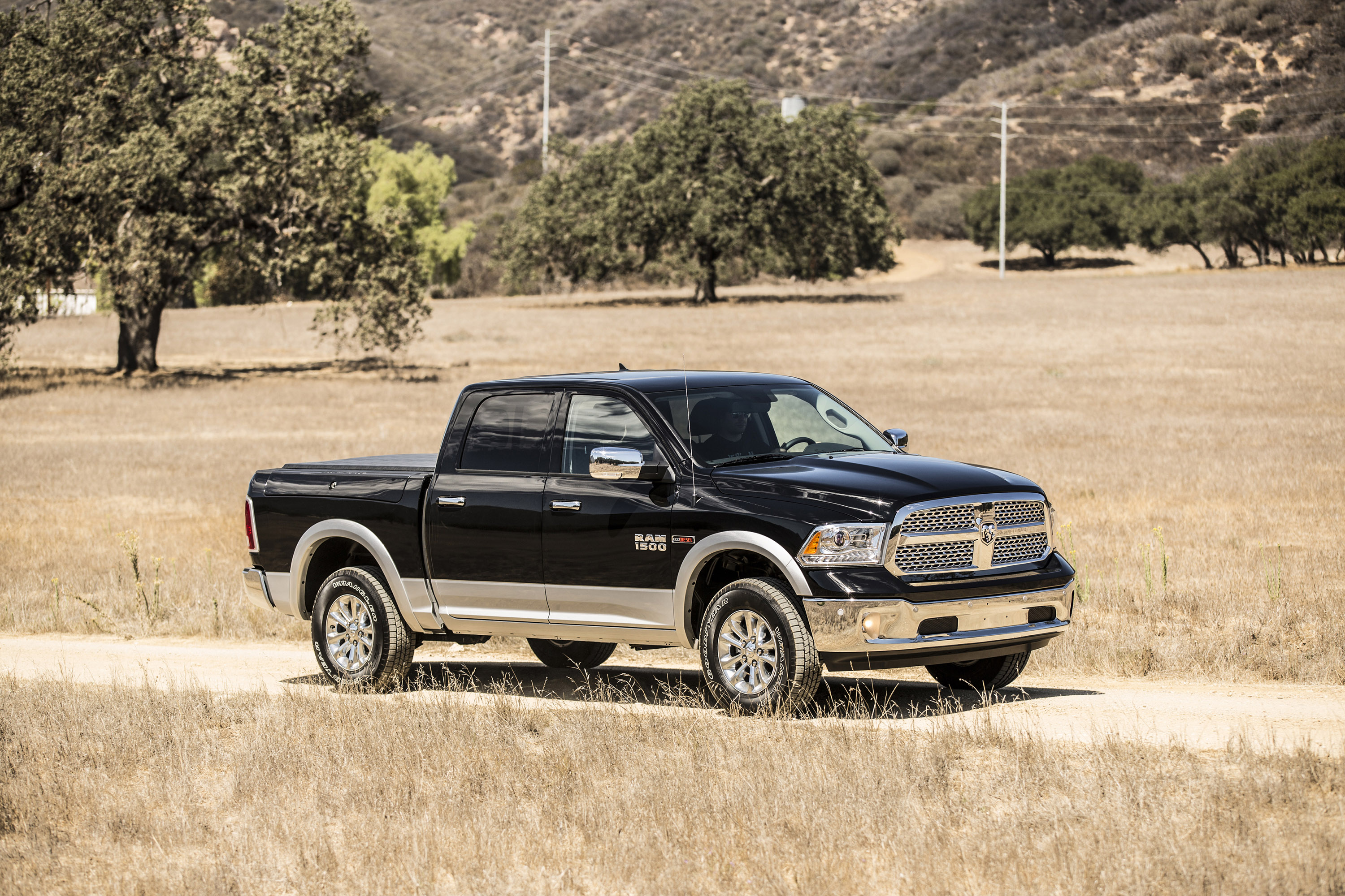 2015 dodge ram 1500 laramie longhorn ecodiesel hd. Black Bedroom Furniture Sets. Home Design Ideas