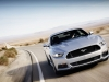2015 Ford Mustang thumbnail photo 34524