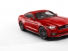 2015 Ford Mustang thumbnail photo 34532
