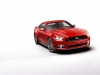 2015 Ford Mustang thumbnail photo 34533