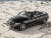 2016 Mercedes-AMG C43 4MATIC Cabriolet thumbnail photo 96633