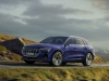 2019 Audi e-tron thumbnail photo 97610