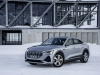 2020 Audi e-tron Sportback thumbnail photo 97619