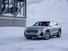 2020 Audi e-tron Sportback thumbnail photo 97620